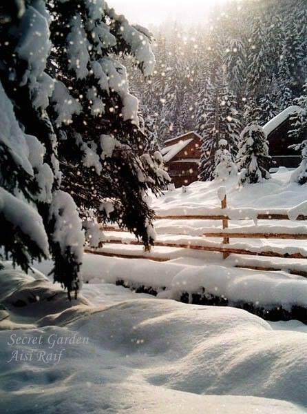 Urime Krishtëlindjet dhe Vitin e ri 2016 AgaHV8a_4Z_PTX_1LFWsZjjvWOfcVjzsBuRGVDX3Ge6OkNhq7QQ_Ow==