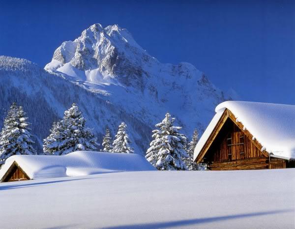 peisazh dimri